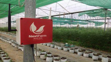 Nông dân tăng năng suất hiệu quả nhờ giải pháp nông nghiệp thông minh